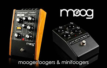 moog-slide-new